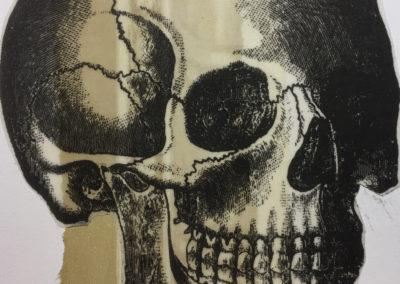 skull collage
