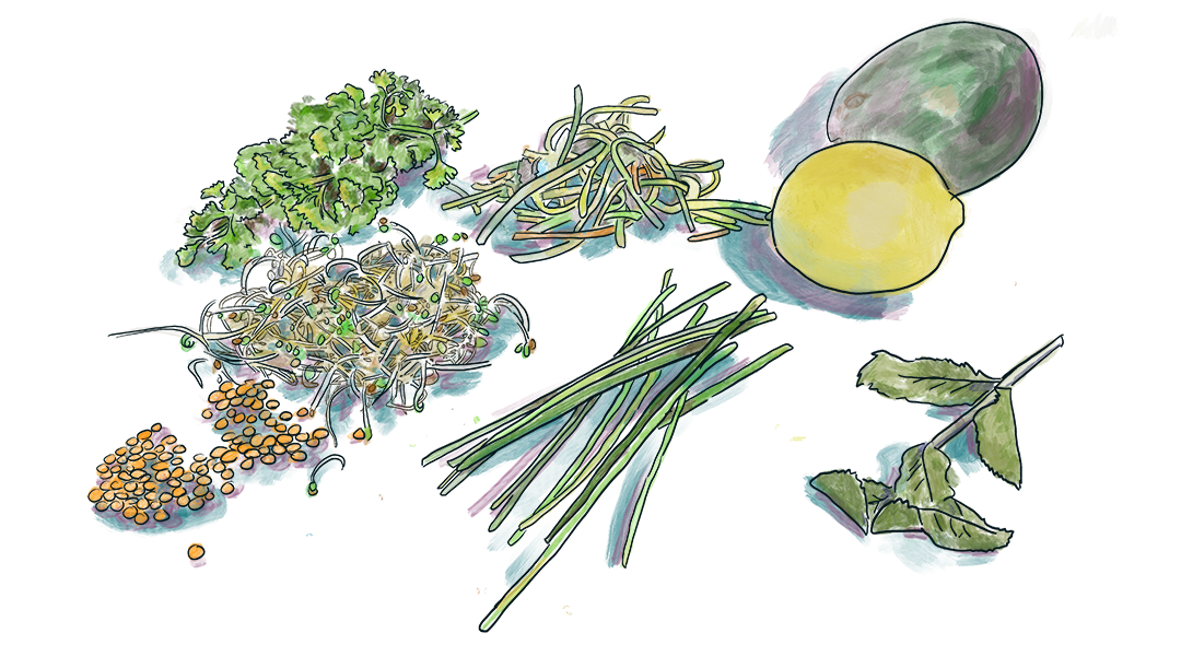 drawn to food